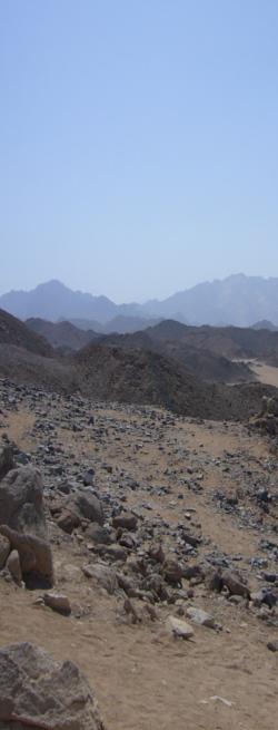 Wüstenbild